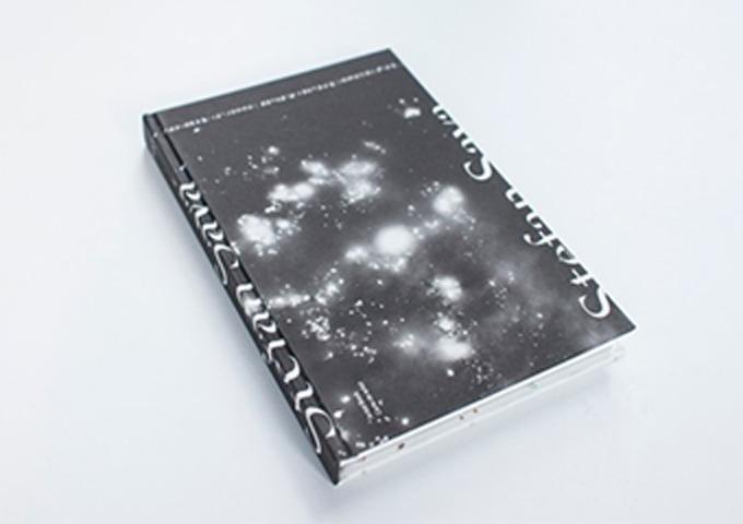 Book-launch---Ștefan-Sava-–-Artist-book